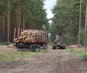 hout-laden